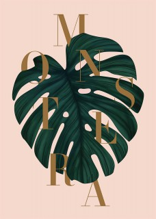Plakat Monstera II