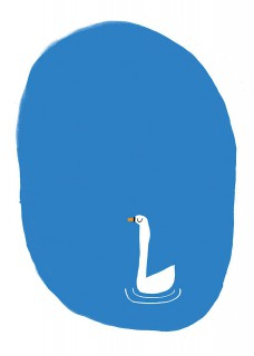 Plakat Swan lake