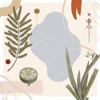 Plakat Petals