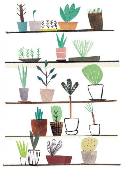 Podlej roślinki