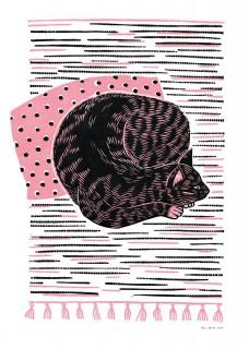 Plakat Kot na chodniczku