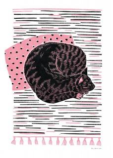 Kot na chodniczku