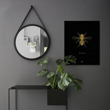 Grafika Chrząszcz / czarny