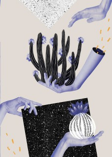 Plakat Kaktus na dłoni I