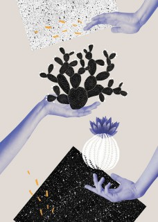 Plakat Kaktus na dłoni II