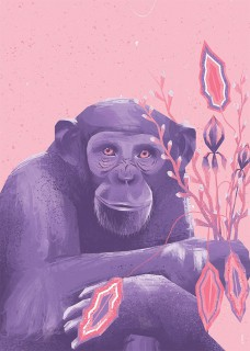 Plakat Małpa
