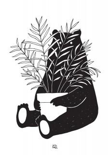 Plakat Miś i roślinka