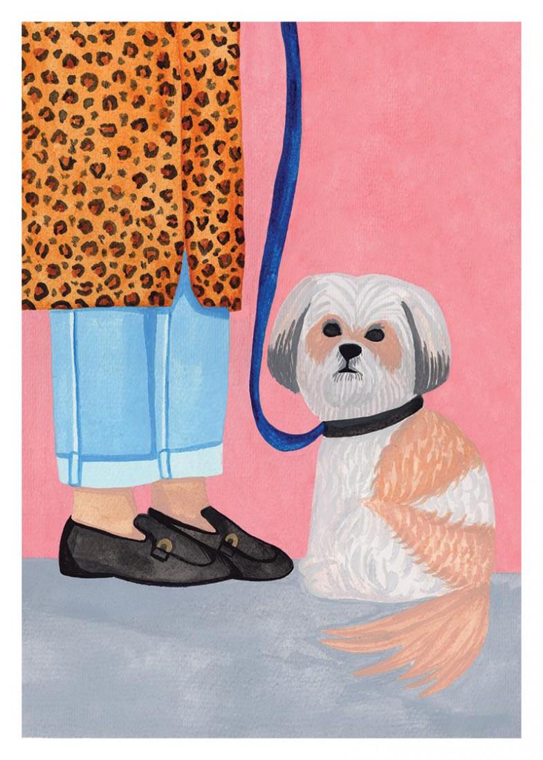 Pies i moda