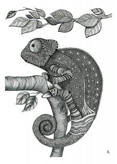 Kameleon I